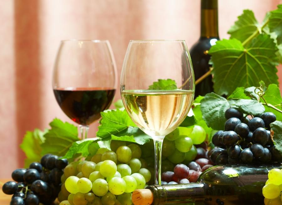 Esempio di vini italiani